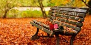 Leggi tutto: Ricette per l'autunno