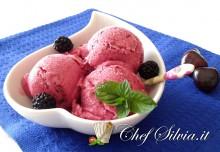 Sorbetto yogurt e frutti di bosco