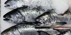 Leggi tutto: Slow Fish - Genova